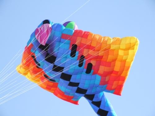 kite-fest-3.JPG