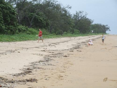 beachcombing-1.jpg